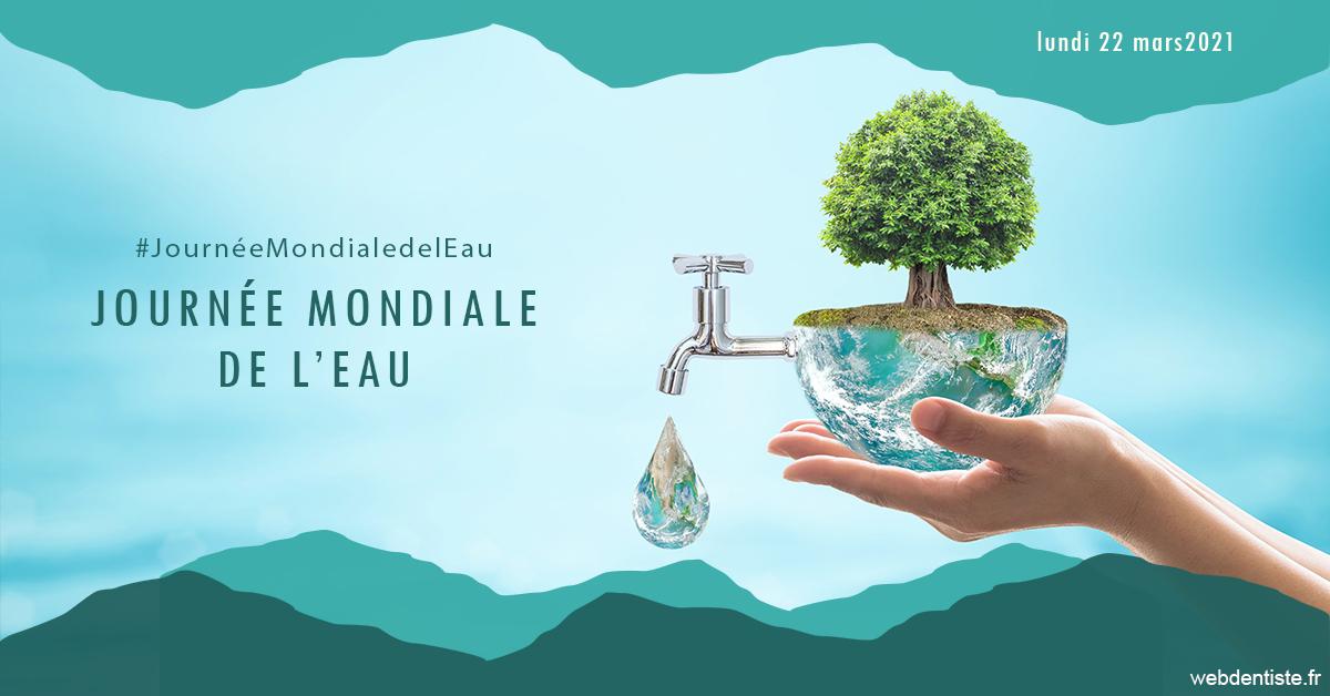 https://www.cabinetdocteursrispalmoussus.fr/Journée de l'eau 1